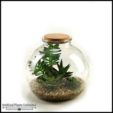 artificial plant terrarium containers artificial plants unlimited