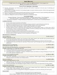 Resume Samples For Marketing Professionals by Marketing Resume Examples Resume Professional Writers