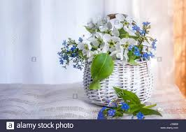 white wicker small basket of flowers forget me nots and apple on a