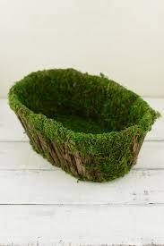 Moss Vase Filler Covered Basket 12 5 Inch Oval