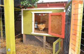 file seattle chicken coop with enclosed run jpg wikimedia commons