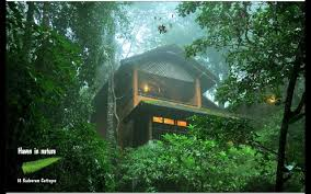 Amazing Tree Houses by Image Detail For Kerala Tree House Tree Top Houses Pinterest