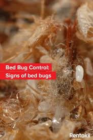 Can Bed Bugs Kill You Bed Bugs Hackensack Http Bedbugshackensack Com Services Detail
