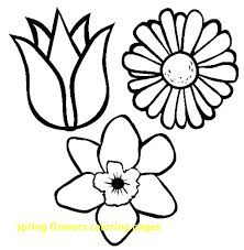 printable spring flowers coloring pages spring flowers flowers coloring pages free printable