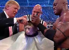 Top Rated Memes - monkey haircut png