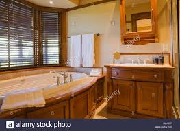 guest bedroom ensuite oval jacuzzi wooden vanity in basement