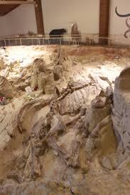 10 pleistocene means ice age images ice age