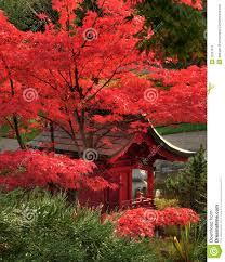 wedding quotes japanese japanese garden quotes garden