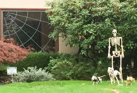 Dog Skeleton Halloween Halloween Countdown Neighborhood Decorations And Scarecrow Mix