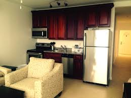 vista villas 1 bedroom cliff top condos for rent in st kitts re