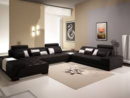 Living Room Decor Natural Colors Black And White Living Room Ideas Pinterest Brown Rug White Base