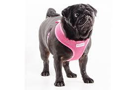 Comfortable Dog Simply Comfortable Comfort Mesh Dog Harness Small Amazon Co Uk