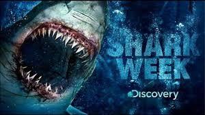 Shark Week Meme - shark week know your meme