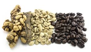 Luwak Coffee kopi luwak the world s most expensive coffee involves cat