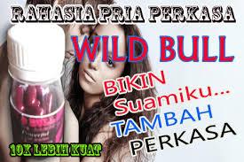 obat kuat wild bull 10x lebih kuat rahasia obat wild bull untuk pria