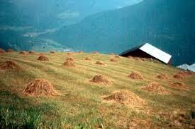 chambre d agriculture de savoie les dossiers de sabaudia org l agriculture dans les pays savoyards