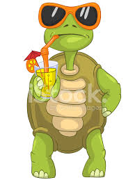 cocktail cartoon funny turtle drinking stock vector freeimages com