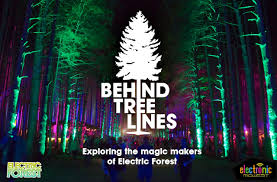 tree lines exploring the magic makers of electric forest