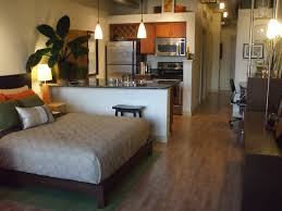 Bed And Living Studio Design Ideas Studio Apartment Apartments And Neutral