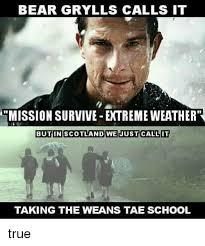Bear Gryls Meme - bear grylls calls it mission survive extreme weather butin