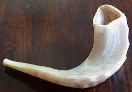shofares de israel por qué el shofar es fascinante unidos x israel