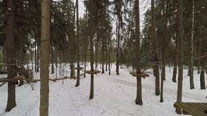 obstacle course with wooden bridges on ropes in snowbound forest