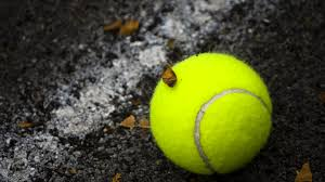 free download tennis ball hd wallpaper download free with tennis