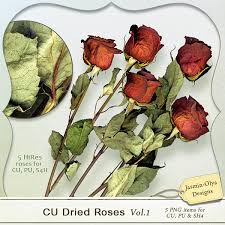 dried roses pickleberrypop commercial use cu cu dried roses vol 1