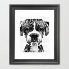 boxer dog black and white boxer dog art print of original watercolor by ojsdogpaintings dog