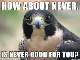 Never Meme - 30 most funniest bird meme images and photos