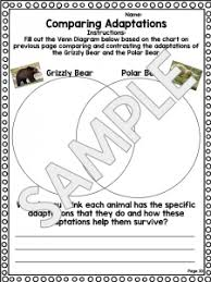 animal adaptations worksheet unit plan for teachers