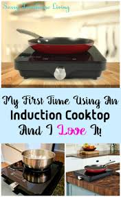 induction cooking recipes peeinn com