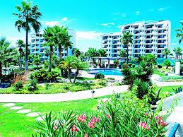 Rocky Point Beach House Rentals by Apartment Sandy Beach C304 Rocky Point Puerto Peñasco Mexico