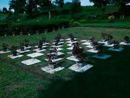 flower garden games online paradizoo a paradise garden and a zoo in tagaytay u2014 the jerny