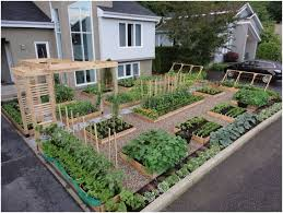 backyards outstanding backyard vegetable garden plans small