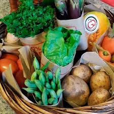 weekly fruit delivery subscription organic fresh harvest starter box weekly delivery