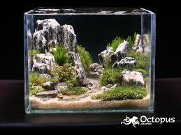 Nano Aquascaping Incredible Nano Tank Nature M