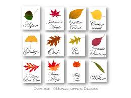 instant autumn tree names table signs print your