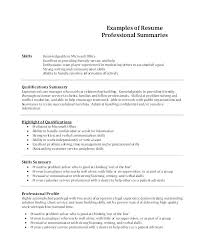summary for resume summaries for resumes summary for resume technical summary resumes