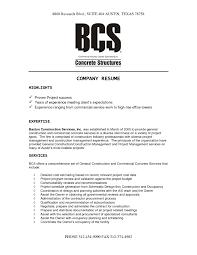 sle company resume templatesinstathredsco company resume exles