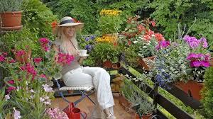 pflanzen f r balkon blumen fr balkon im schatten pflanzen menerima über die blumen