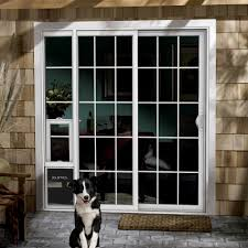 Cat Door For Interior Door Patio Door Cat Door Gallery Glass Door Interior Doors U0026 Patio Doors