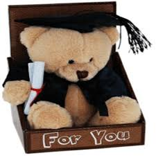 graduation bears graduation in box for you bulk discounts available