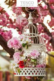 26 best spring ideas for home u0026 garden tesco images on pinterest