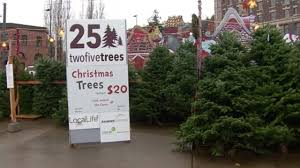 allegedly steals from charity s tree lot