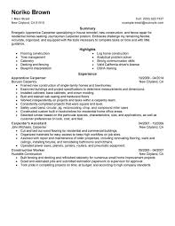 Resume Examples Summary by Carpenter Job Description For Resume Writing Resume Sample