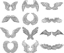 learn more about drawings of wings for your angelic