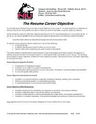 What To Title Your Resume Examples Of Resume Titles 11 Resume Title Example Producer
