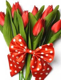 free flowers flower images free stock photos 11 261 free stock photos