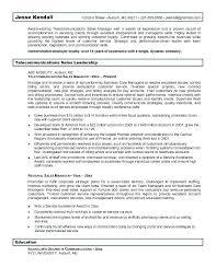 resume objective sles management telecommunications resume objective sales exles inssite